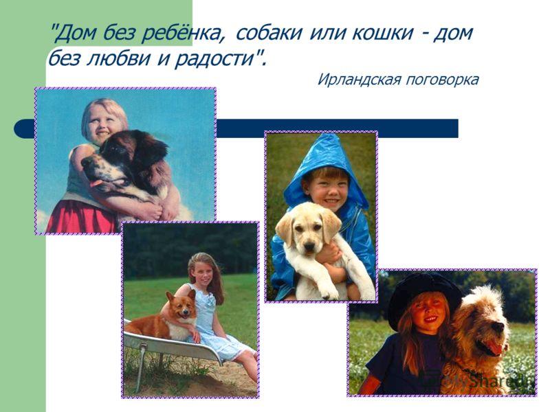 Дом без ребёнка, собаки или кошки - дом без любви и радости. Ирландская поговорка