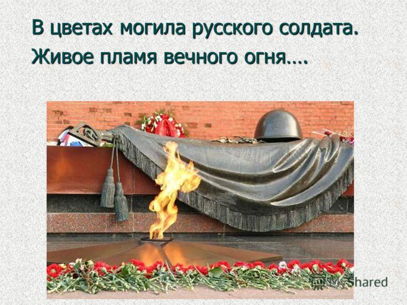 В цветах могила русского солдата. Живое пламя вечного огня….