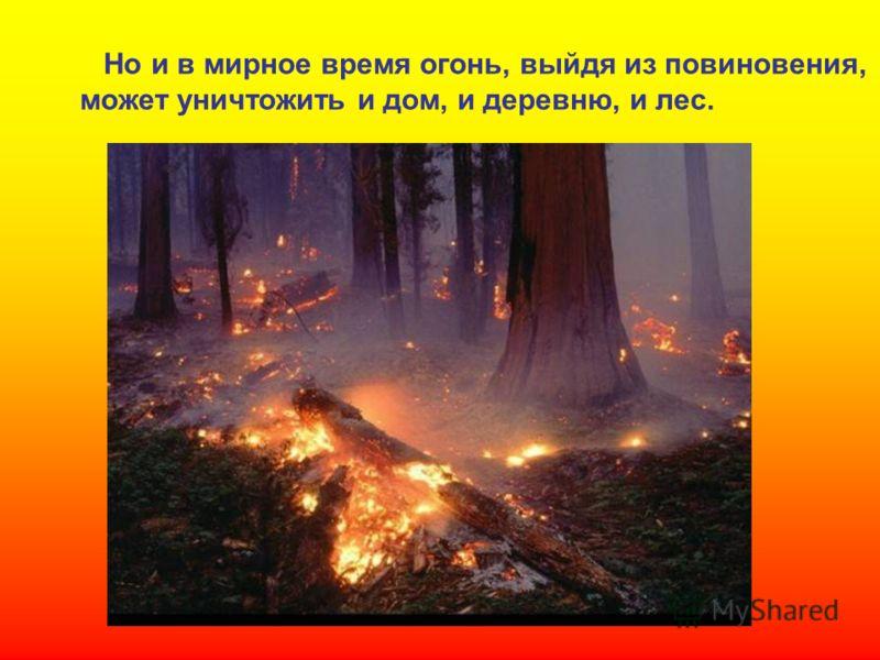 Но и в мирное время огонь, выйдя из повиновения, может уничтожить и дом, и деревню, и лес.