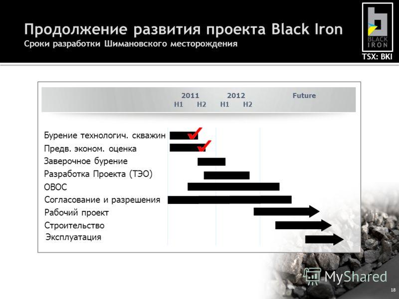 TSX: BKI 18 Продолжение развития проекта Black Iron Сроки разработки Шимановского месторождения H1H2H1H2 20112012 Предв. эконом. оценка Разработка Проекта (ТЭО) Согласование и разрешения Строительство Бурение технологич. скважин Заверочное бурение ОВ