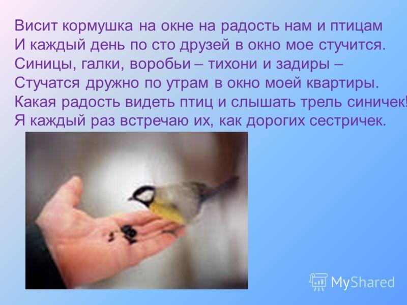 Висит кормушка на окне на радость нам и птицам И каждый день по сто друзей в окно мое стучится. Синицы, галки, воробьи – тихони и задиры – Стучатся дружно по утрам в окно моей квартиры. Какая радость видеть птиц и слышать трель синичек! Я каждый раз