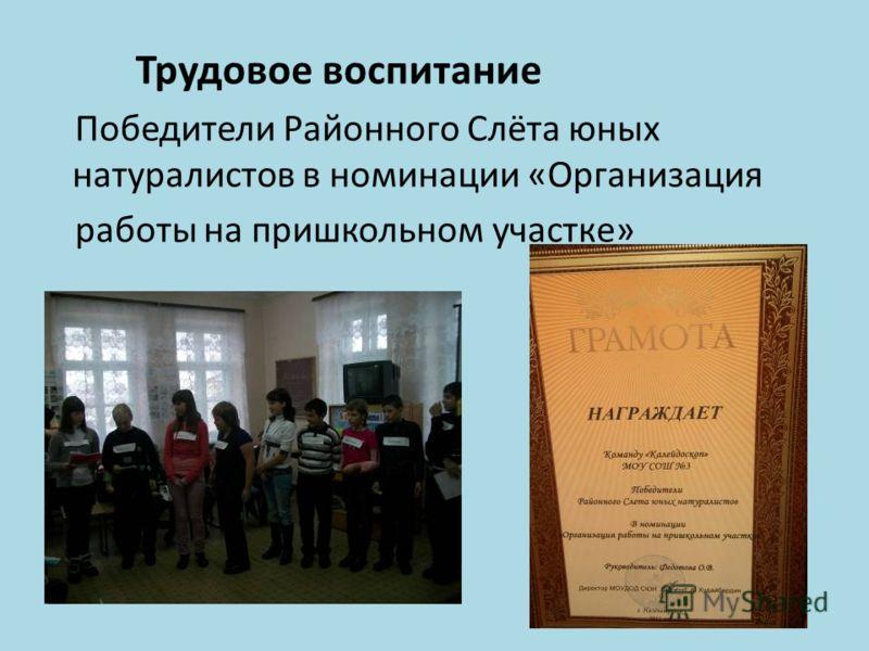 Трудовое воспитание Победители Районного Слёта юных натуралистов в номинации «Организация работы на пришкольном участке»