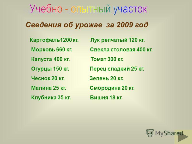 Сведения об урожае за 2009 год Картофель1200 кг. Лук репчатый 120 кг. Морковь 660 кг. Свекла столовая 400 кг. Капуста 400 кг. Томат 300 кг. Огурцы 150 кг. Перец сладкий 25 кг. Чеснок 20 кг. Зелень 20 кг. Малина 25 кг. Смородина 20 кг. Клубника 35 кг.