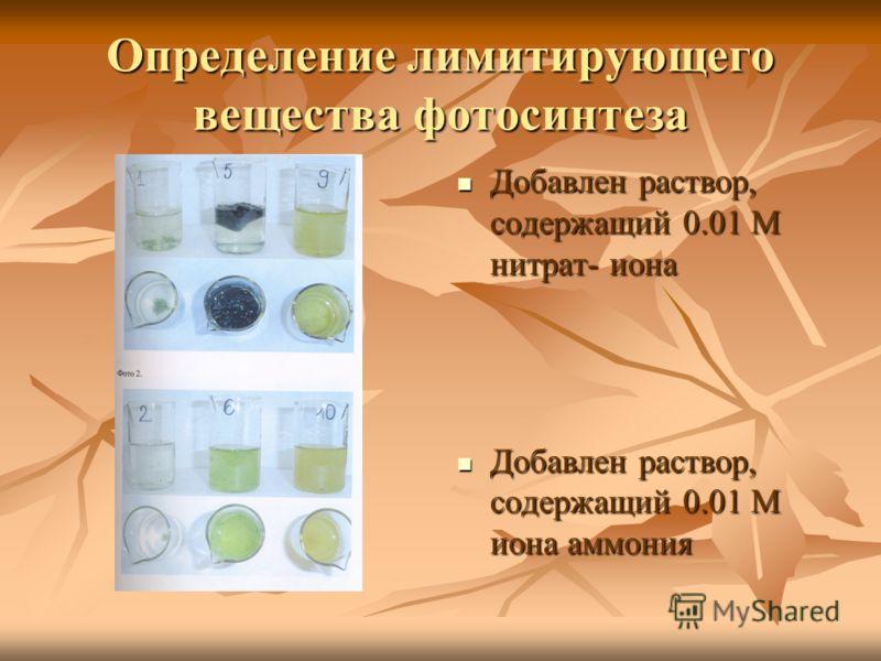 Определение лимитирующего вещества фотосинтеза Добавлен раствор, содержащий 0.01 М нитрат- иона Добавлен раствор, содержащий 0.01 М нитрат- иона Добавлен раствор, содержащий 0.01 М иона аммония Добавлен раствор, содержащий 0.01 М иона аммония