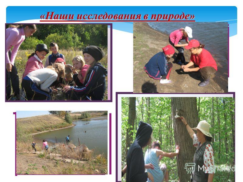 «Наши исследования в природе»
