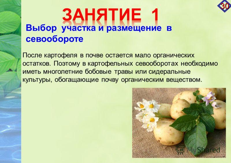 После картофеля в почве остается мало органических остатков. Поэтому в картофельных севооборотах необходимо иметь многолетние бобовые травы или сидеральные культуры, обогащающие почву органическим веществом. Выбор участка и размещение в севообороте 3