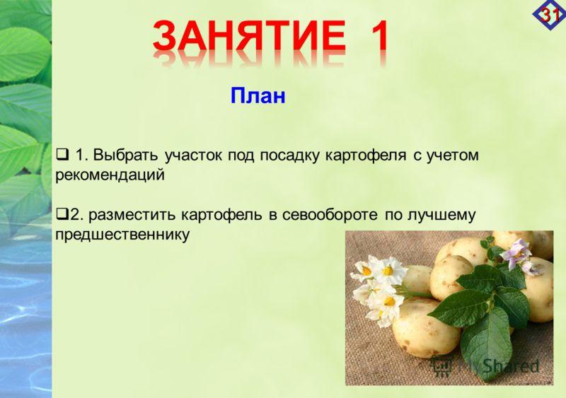 1. Выбрать участок под посадку картофеля с учетом рекомендаций 2. разместить картофель в севообороте по лучшему предшественнику План 31