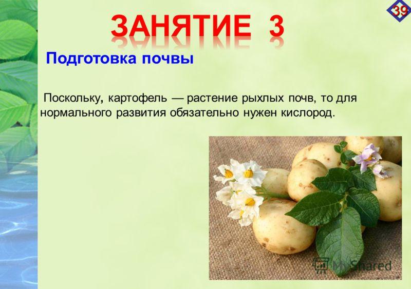 Поскольку, картофель растение рыхлых почв, то для нормального развития обязательно нужен кислород. Подготовка почвы 39