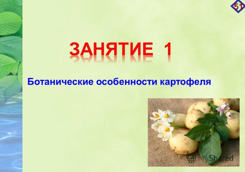 Ботанические особенности картофеля 51