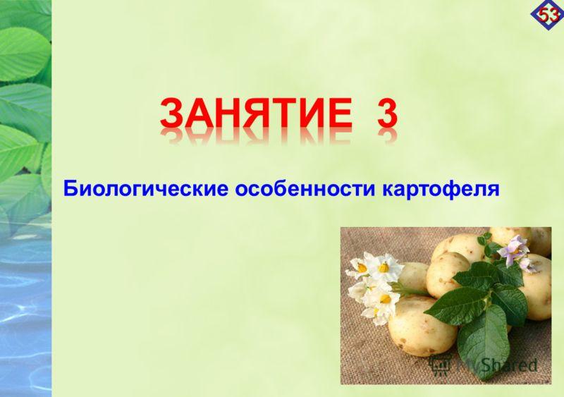 Биологические особенности картофеля 53