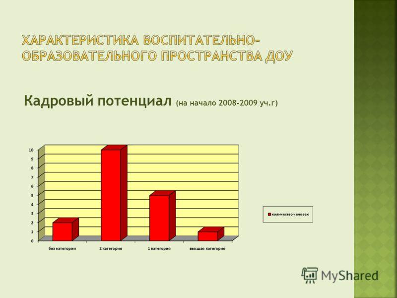 Кадровый потенциал (на начало 2008-2009 уч.г)