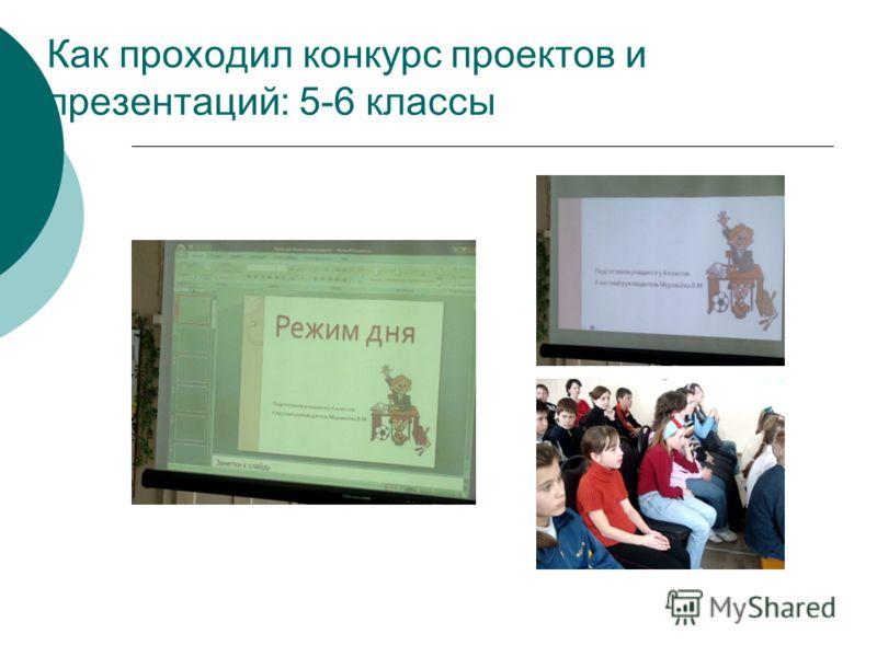 Как проходил конкурс проектов и презентаций: 5-6 классы