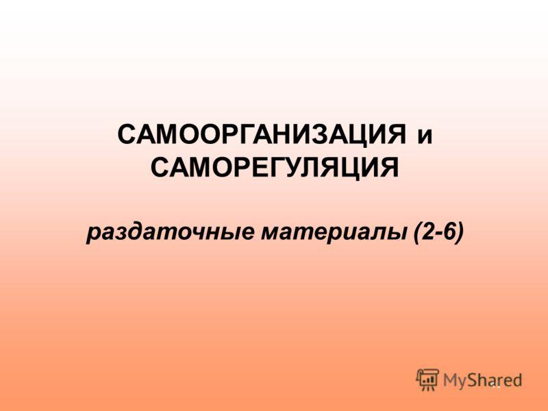 41 САМООРГАНИЗАЦИЯ и САМОРЕГУЛЯЦИЯ раздаточные материалы (2-6)