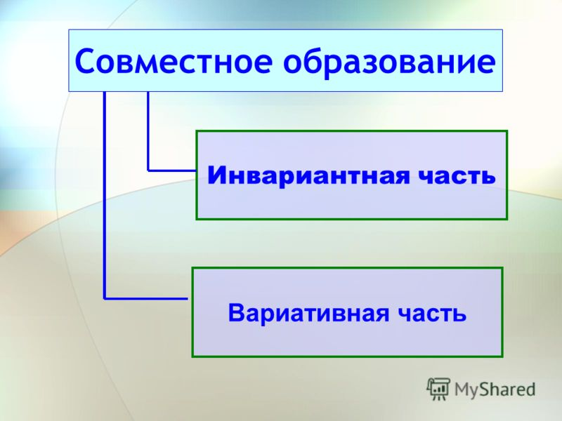 Совместное образование Инвариантная часть Вариативная часть