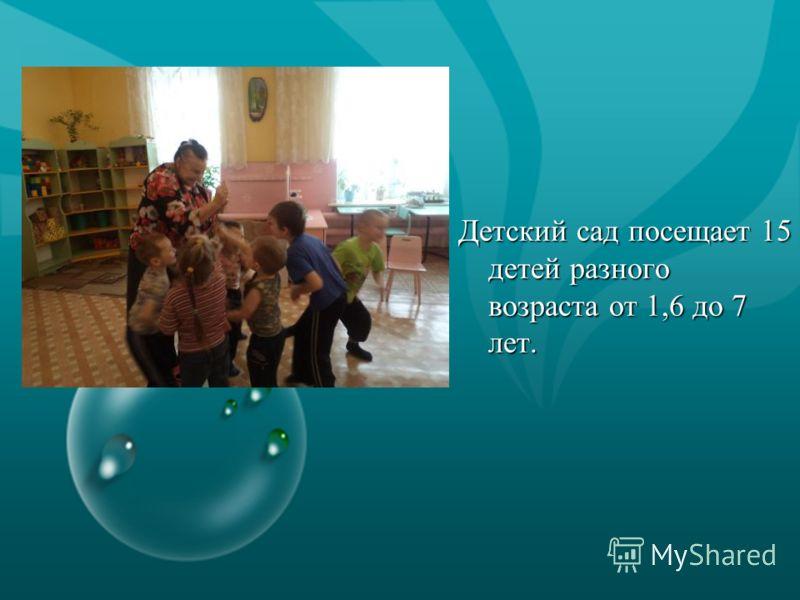 Детский сад посещает 15 детей разного возраста от 1,6 до 7 лет.