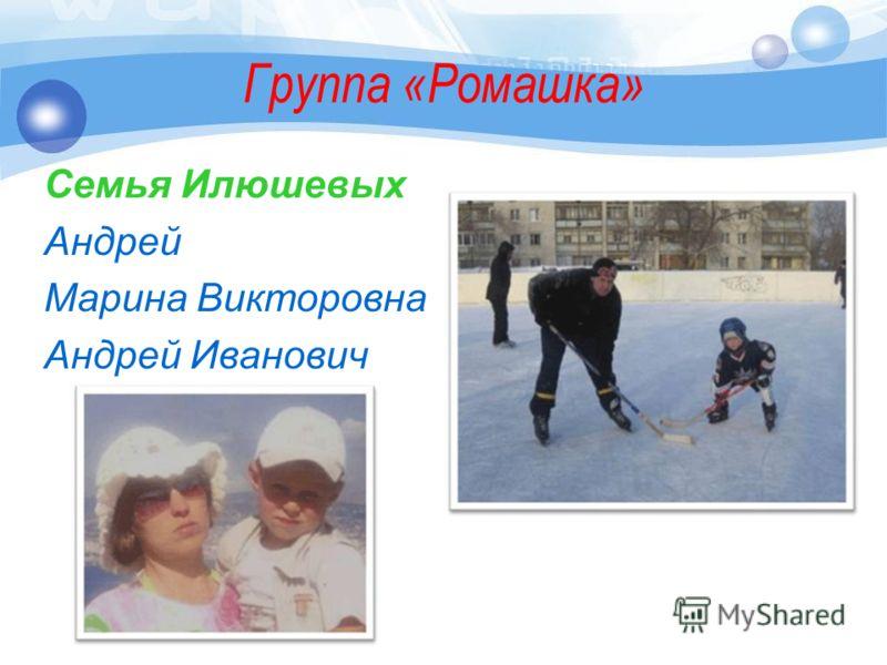 Группа «Ромашка» Семья Илюшевых Андрей Марина Викторовна Андрей Иванович