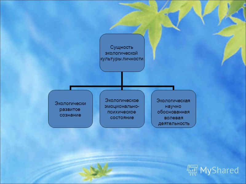 Сущность экологической культуры личности Экологически развитое сознание Экологическое эмоционально- психическое состояние Экологическая научно обоснованная волевая деятельность