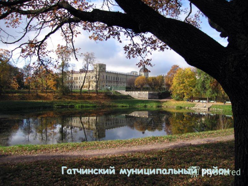 Гатчинский муниципальный район