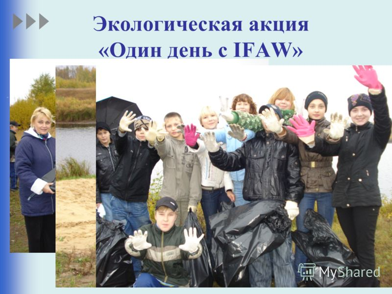 Экологическая акция «Один день с IFAW»