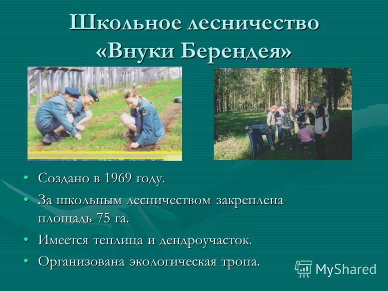 Школьное лесничество «Внуки Берендея» Создано в 1969 году. За школьным лесничеством закреплена площадь 75 га. Имеется теплица и дендроучасток. Организована экологическая тропа.