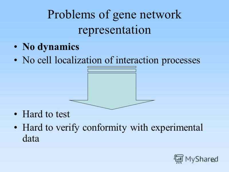 11 Problems of gene network representation No dynamics No cell localization of interaction processes Hard to test Hard to verify conformity with experimental data