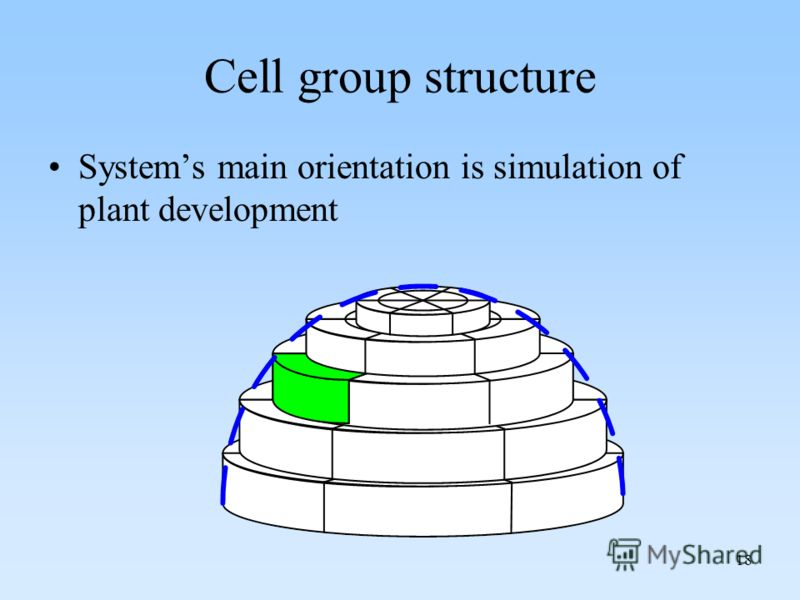 18 Cell group structure Systems main orientation is simulation of plant development