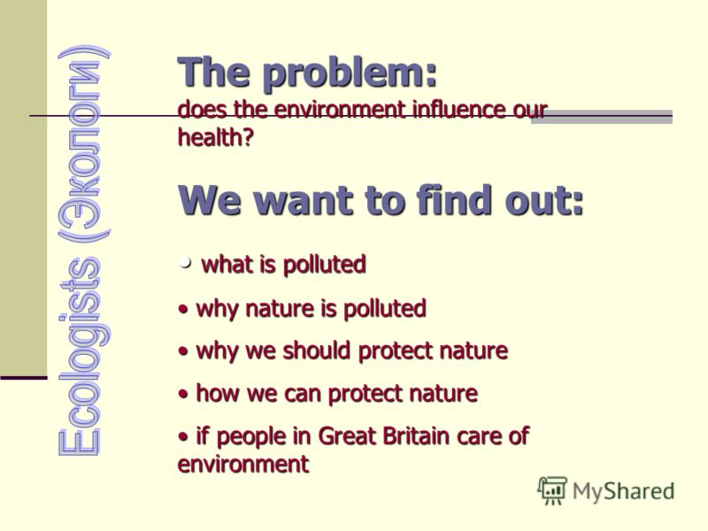 The problem: does the environment influence our health? We want to find out: what is polluted what is polluted why nature is polluted why nature is polluted why we should protect nature why we should protect nature how we can protect nature how we ca