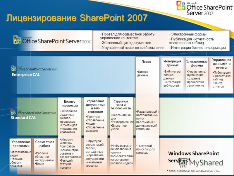 Лицензирование SharePoint 2007 Портал для совместной работы + управление контентом Жизненный цикл документов Улучшенный поиск по всей компании Электронные формы Публикация и отчетность электронных таблиц Интеграция бизнес-информации Windows SharePoin