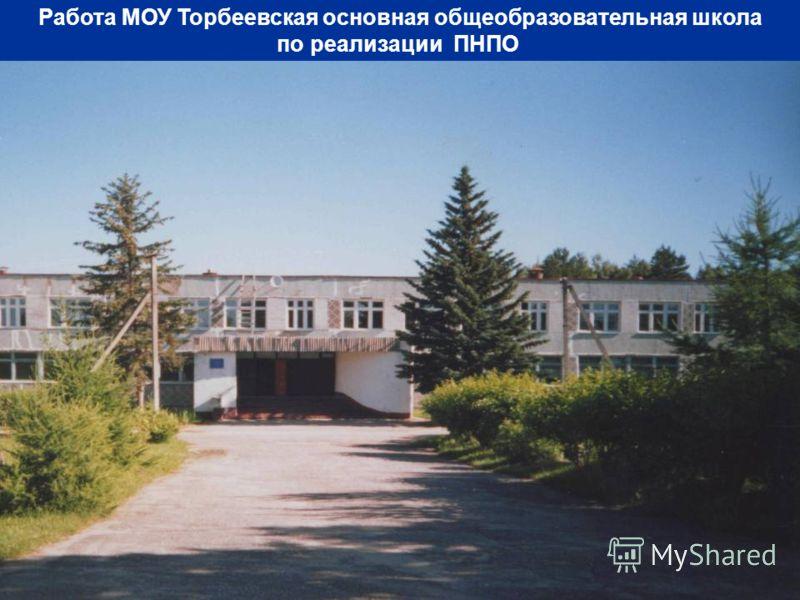 Работа МОУ Торбеевская основная общеобразовательная школа по реализации ПНПО
