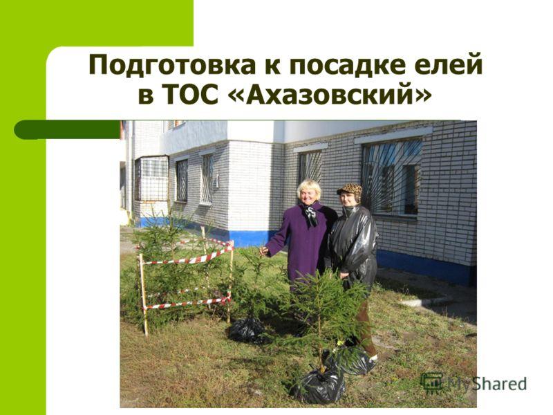Подготовка к посадке елей в ТОС «Ахазовский»
