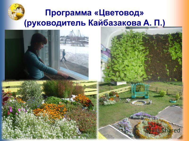 Программа «Цветовод» (руководитель Кайбазакова А. П.)
