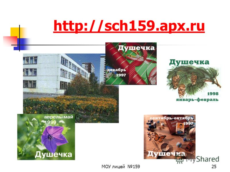 МОУ лицей 15925 http://sch159.apx.ru
