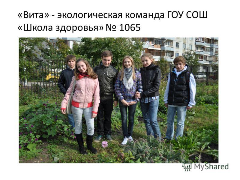 «Вита» - экологическая команда ГОУ СОШ «Школа здоровья» 1065