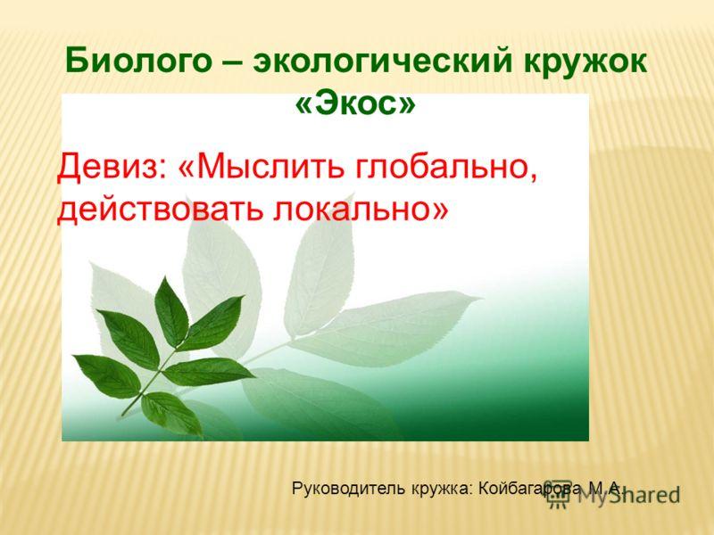Биолого – экологический кружок «Экос» Девиз: «Мыслить глобально, действовать локально» Руководитель кружка: Койбагарова М.А.