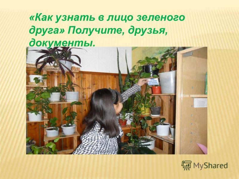 «Как узнать в лицо зеленого друга» Получите, друзья, документы.