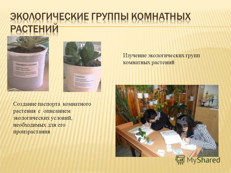 Создание паспорта комнатного растения с описанием экологических условий, необходимых для его произрастания Изучение экологических групп комнатных растений