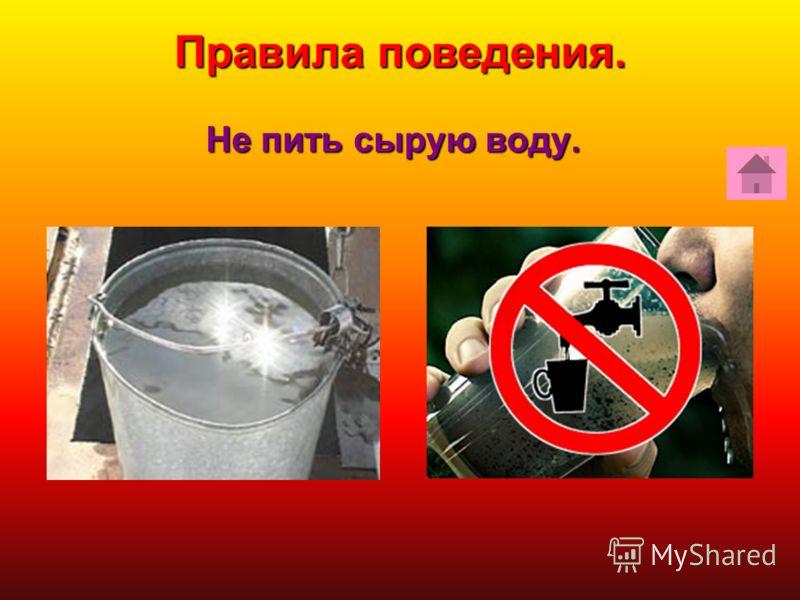 Не пить сырую воду. Правила поведения.