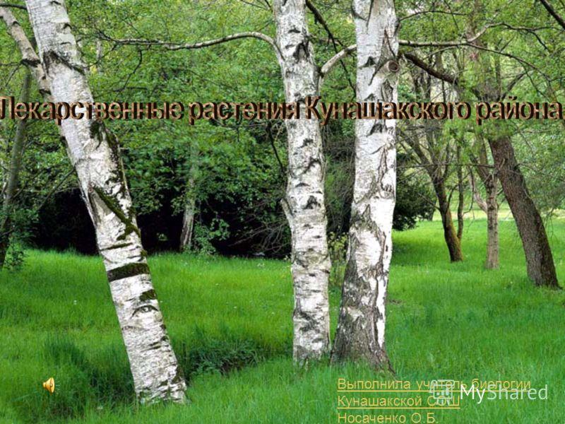 Выполнила учитель биологии Кунашакской СОШ Носаченко О.Б.