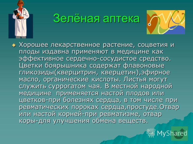 Зелёная аптека Хорошее лекарственное растение, соцветия и плоды издавна применяют в медицине как эффективное сердечно-сосудистое средство. Цветки боярышника содержат флавоновые гликозиды(кверцитрин, кверцетин),эфирное масло, органические кислоты. Лис