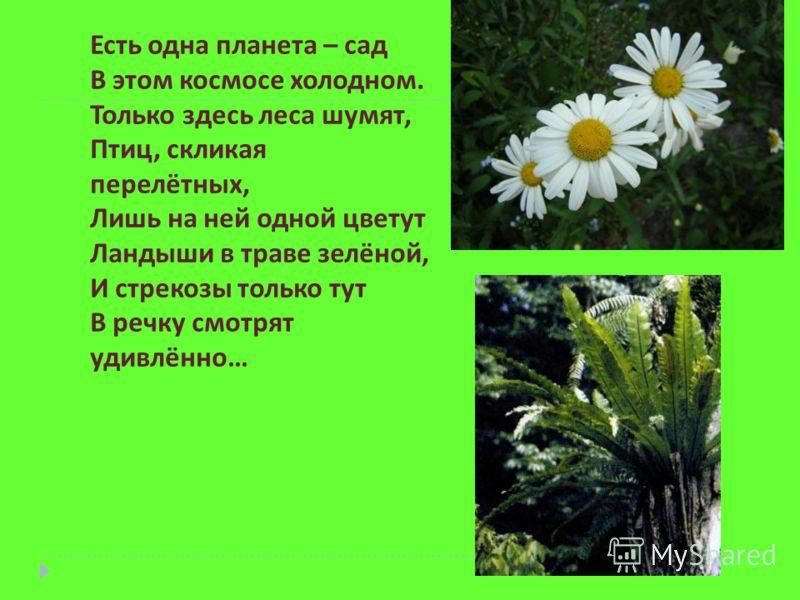 Есть одна планета – сад В этом космосе холодном. Только здесь леса шумят, Птиц, скликая перелётных, Лишь на ней одной цветут Ландыши в траве зелёной, И стрекозы только тут В речку смотрят удивлённо…