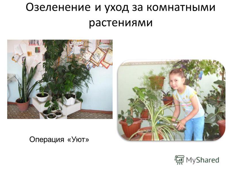 Озеленение и уход за комнатными растениями Операция «Уют»