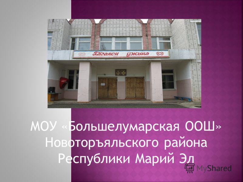 МОУ «Большелумарская ООШ» Новоторъяльского района Республики Марий Эл
