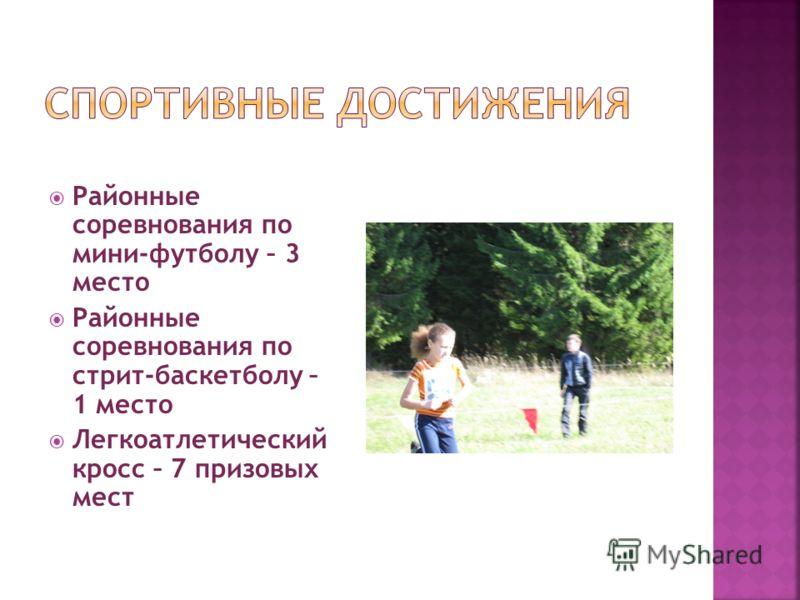 Районные соревнования по мини-футболу – 3 место Районные соревнования по стрит-баскетболу – 1 место Легкоатлетический кросс – 7 призовых мест