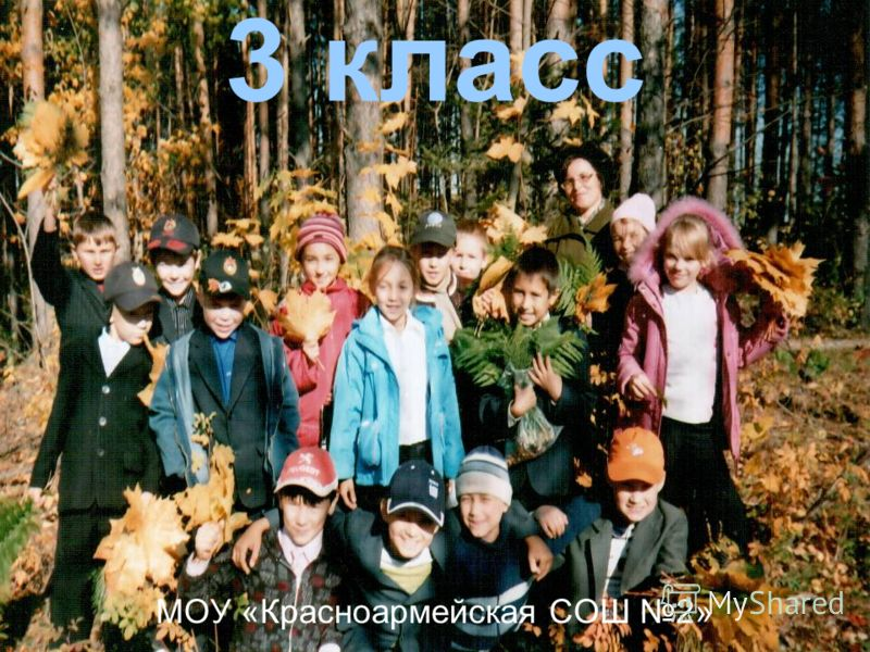 3 класс МОУ «Красноармейская СОШ 2»