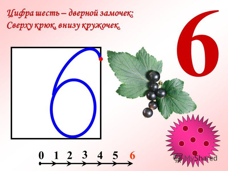 Цифра шесть – дверной замочек: Сверху крюк, внизу кружочек. 6 214056 3