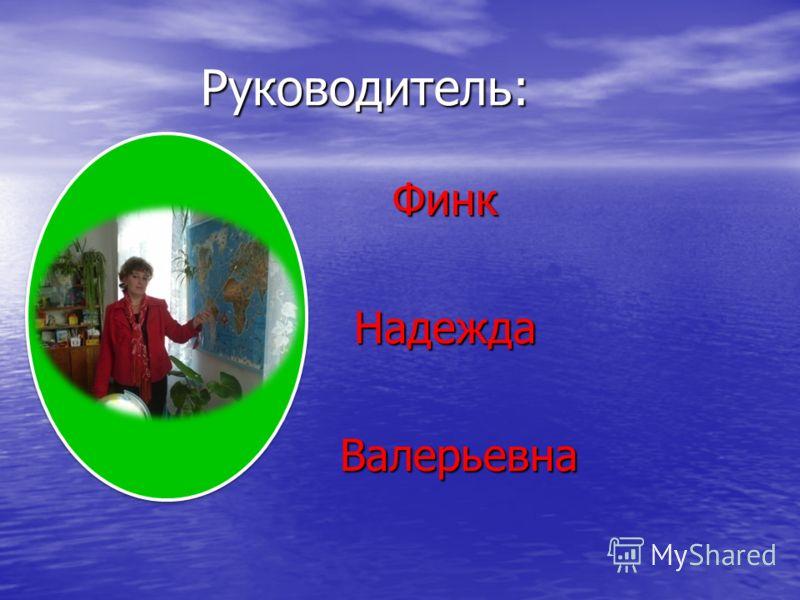 Руководитель: Руководитель: Финк Финк Надежда Надежда Валерьевна Валерьевна