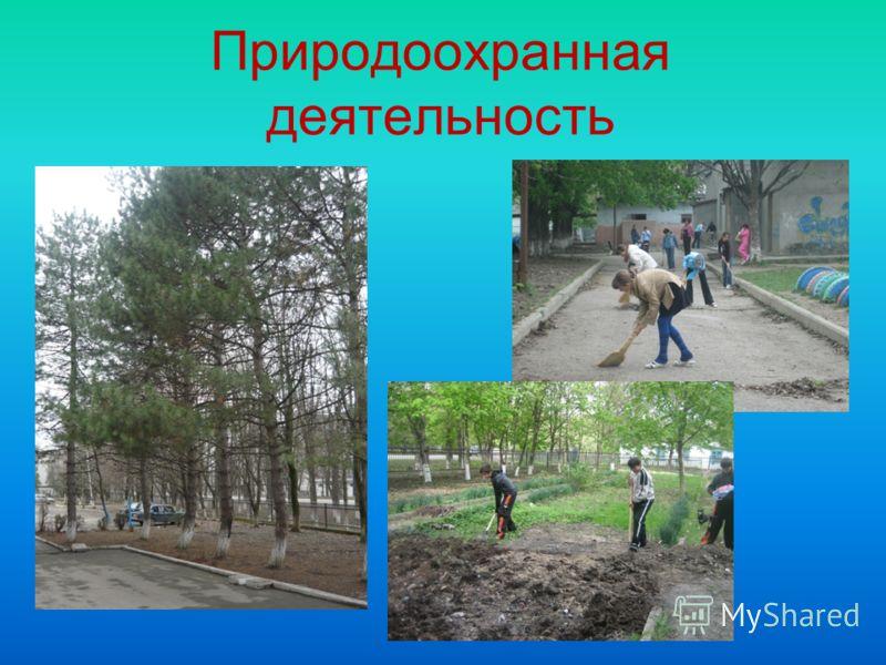 Природоохранная деятельность