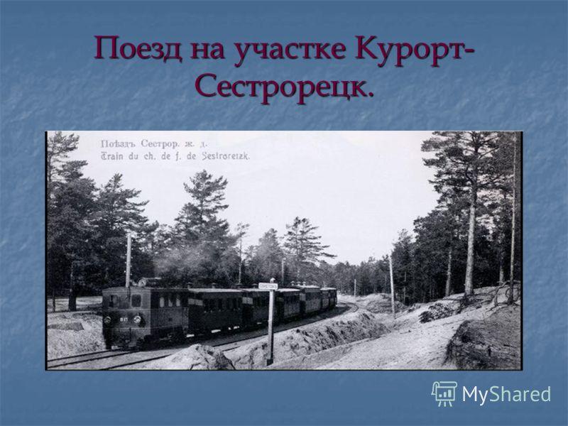 Поезд на участке Курорт- Сестрорецк.