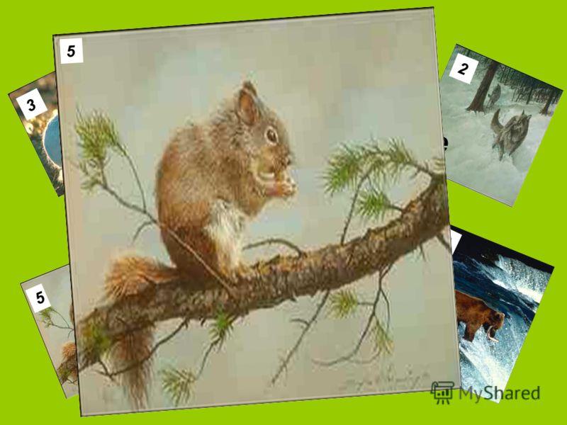 1 2 3 4 5 6 Что за зверёк забывает место, где спрятаны его запасы, и ими кормит других обитателей леса? 5