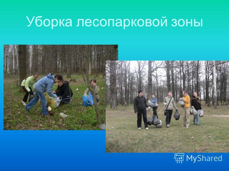 Уборка лесопарковой зоны